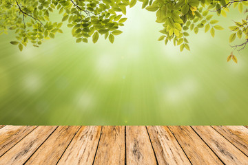 green leaves on green bokeh background wooden