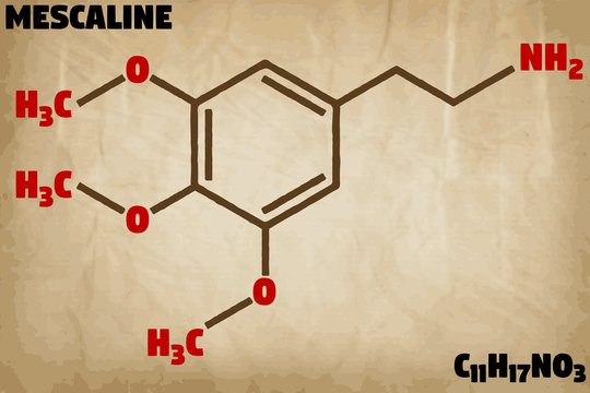 Detailed infographic illustration of the molecule of Mesacline.