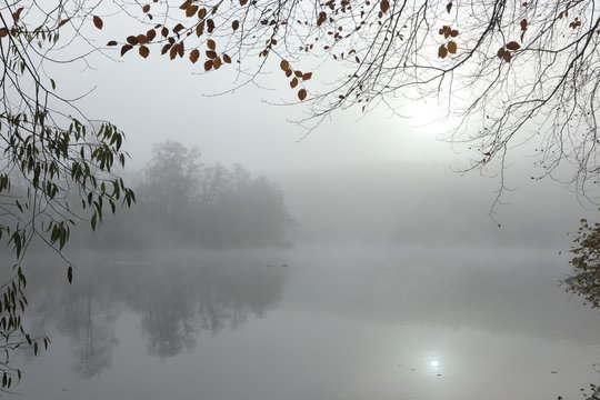 misty morning, concept, burial, death, tranquility