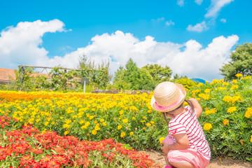 お花畑と子供