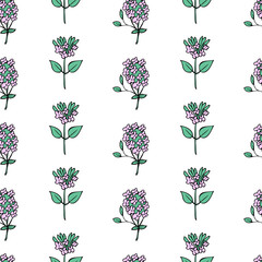 Seamless floral pattern Blossoming oregano flower vector hand drawn healing herb isolated on white background, food botanical illustration Marjoram texture design for cosmetics, menu, wallpaper