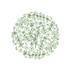 Round frame Hypericum, St. John's wort or Hartheu branch vector sketch hand drawn healing plant isolated on white background, Tutsan herbs design for card, package cosmetic, medicine, natural tea