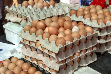 Eggs in boxes at Vilafranca dP market