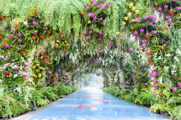 Romantic footpath in the park or garden. The arch covered with colorful orchid e.g pink, white, yellow. Beautiful walk way with camber and gorgeous flowers. A tunnel decorated with green moss and fern Wall mural