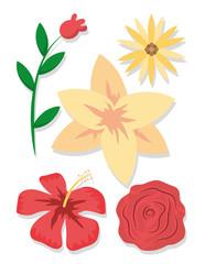 Set of flowers cartoons