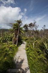 Abel Tasman track New Zealand 2