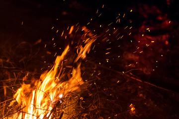 Fond de hotte en verre imprimé Volcan Night bonfire with sparks motion blur. Fire background with copyspace