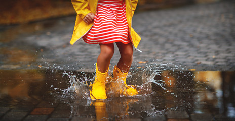 leg of child in rubber boots in puddle  on autumn walk
