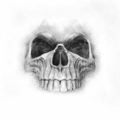 Hand drawn skull - graphite