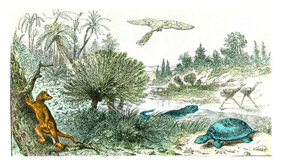 Ideal landscape of the Cretaceous period, vintage engraving.