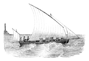 Guigue as close as possible, viewed from the side, vintage engraving.