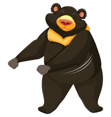 Black bear dancing white background