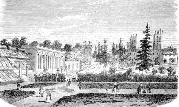 Montpellier, The Jardin des Plantes, vintage engraving.