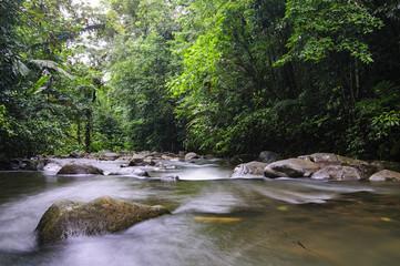 Chachagua River Costa Rica