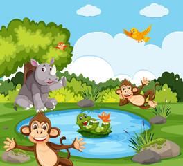 Wild animals in the nature