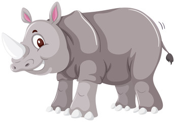 A rhinoceros on white background