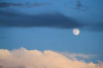 moon in blue sky at dusk