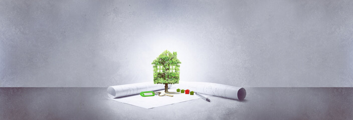 projet immobilier,maison écologie,arbre