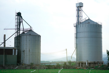 View of rice and corn factory with huge metal seed storages place between rice field