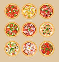 Vector illustration set of pizza with different ingredients, vegetarian pizza, margarita and seafood. Pizza menu concept in flat style.