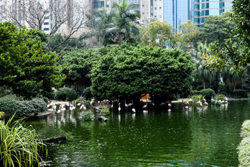 Kowloon Park 九龍公園