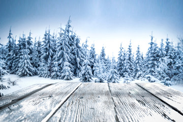table background of free space for your decorationa and winter landscape of forest