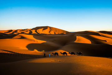 Landscape view of sand dunes in Sahara desert with Moroccan men with camels in a caravan