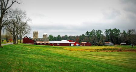 Green Fields of Autumn / Farmland in upstate New York in Autumn