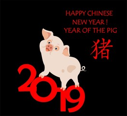 Greeting paper childish card for Chinese New Year with funny piggy, hieroglyph pig and 2019 numbers. Flat style