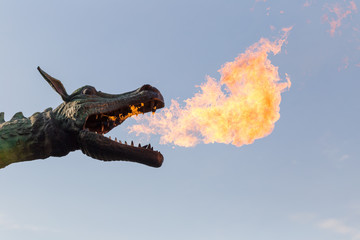 Dragon head with flames real photo portrait