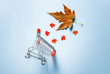 Autumn shopping basket. A cart full of autumn leaves. The minimal creative concept