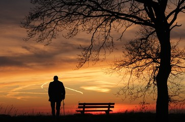 Silhouette of a old man watching the sunset with walking stick next to the bench tree alone sad end of life