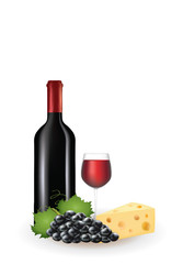 Wine and cheese. vector illustration