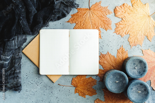 Autumn flat lay composition on a grey concrete background  Maple