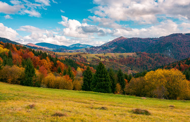 wonderful autumn scenery in mountains. beautiful countryside with forested hills and gorgeous afternoon sky with clouds