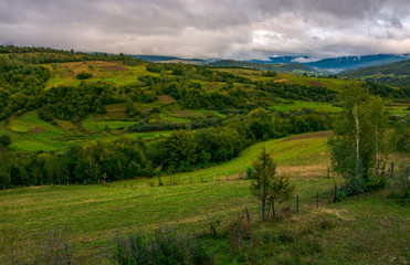 beautiful countryside on an overcast day. rural area of Carpathian mountains in autumn