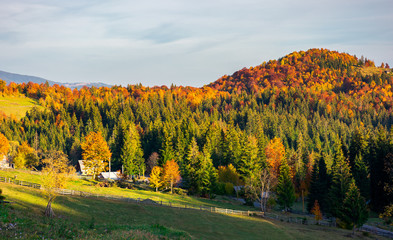 mountainous countryside in autumn. village near the forest in evening