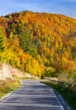 winding road through forested mountains. beautiful autumn weather on sunny afternoon.