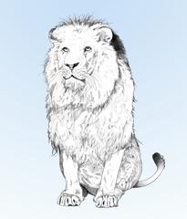 Löwe auf blauen hintergrund.