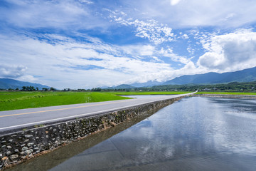 Landscape View Of Beautiful Paddy Field (Rice Plantation) At Brown Avenue, Chishang, Taitung, Taiwan