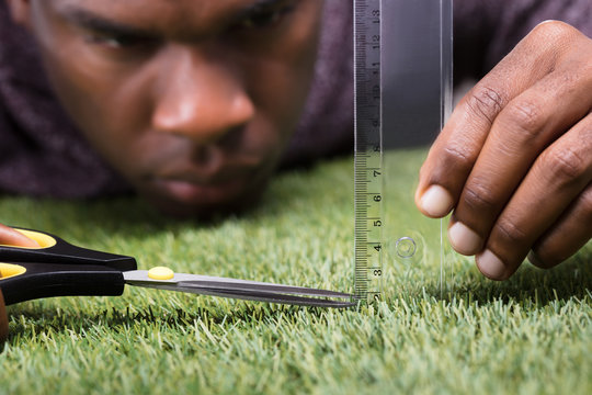 Man Cutting The Measured Grass With Scissor