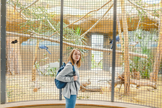 Girl watching birds at the zoo. Leisure in touch with animals and nature concept