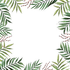 Watercolor palm leaves with seeds isolated on white background