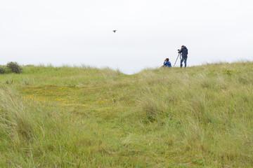 Birdwatching on Dutch Wadden islands