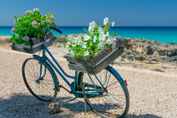 Vintage bicycle adapted for flower arrangement (bicycle with basket of flowers)