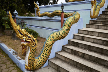 Wall Murals Dragons Tempel Schlange Drache