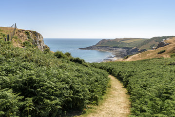 A path leading through foliage, towards the sea and distant headland, on a bright summers day. The path is part of the Welsh Coastal Path