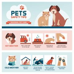 Seasonal pet safety tips