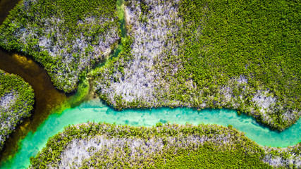 Drone view of nature at Sammy's Creek in Sugarloaf Key Miami Florida Wall mural