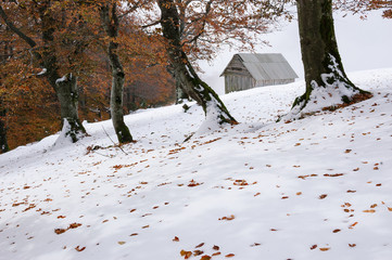 Wall Mural - Autumn landscape with the first snow in the mountains